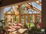 Oak conservatory in Surrey with plants